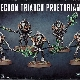 Ver artículos de Games Workshop - Pretorianos de la Triarca / Necroguardias