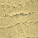 Ver artículos de Vallejo - Arena Desierto