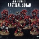 Ver artículos de Games Workshop - Blood Angels Tactical Squad